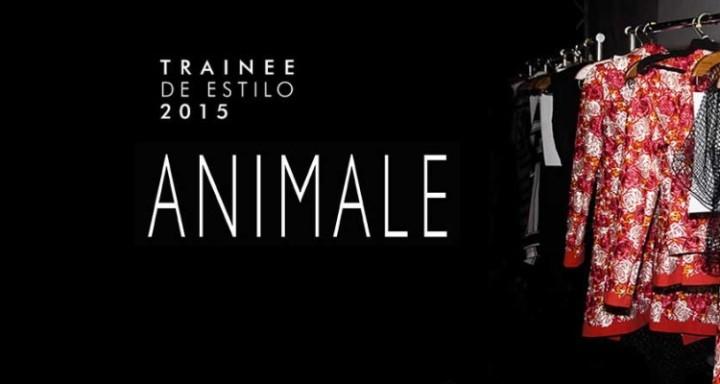 Programa-de-Trainee-Animale-2015-modaworks-750x400